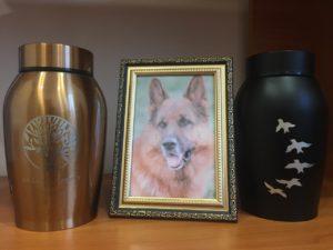 Кремация собак в Перми крематорий для собак Ветритуал